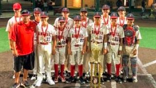 angels, baseball, youth, usssa, 13u, florida